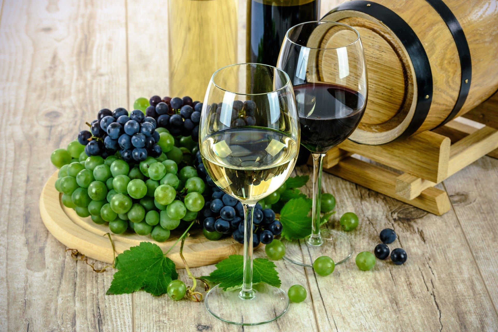 Claves para invertir en la industria de los vinos